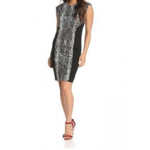 Chaus Color-Block Snake-Print Dress